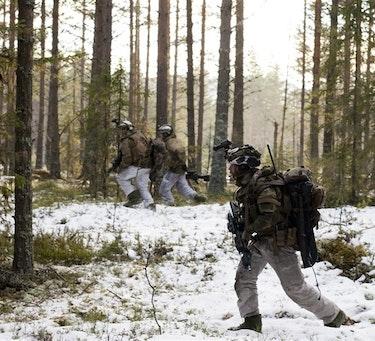 Telemark Bataljonens fotsoldater under øvelsen YMER viking 2016. Foto: Kristian Verlo Vikestad / Forsvaret